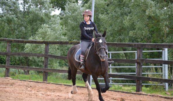 practice-horse-riding